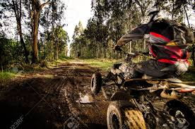 motocross atv quad rider jumping on a muddy forest trail stock photo picture
