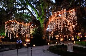 brookgreen gardens u0027 night of a thousand candles lights up the