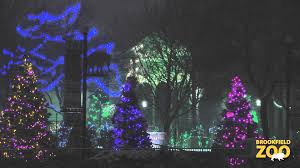 Zoo Light Chicago by Brookfield Zoo Holiday Magic 2013 Youtube