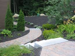 tree ideas for backyard lovely backyard landscape design ideas with some small ornamental