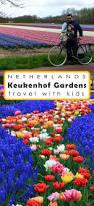 flower garden in amsterdam keukenhof tulip gardens in netherlands moms tots zurich