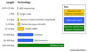Genome Mapping Genome Mapping In Plant Comparative Genomics Trends In Plant Science