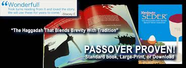 30 minute seder the haggadah that blends brevity with tradition 30 minute seder home