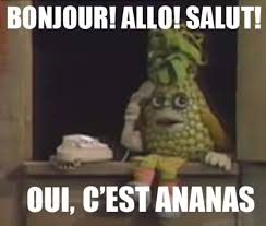 Meaning Of Meme In French - je suis un ananas know your meme