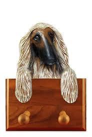 afghan hound ireland afghan hound