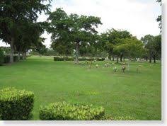 cemetery plots for sale buy sell plots burial spaces cemetery property for sale new