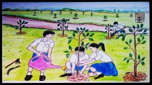 how to draw a scenery of tree plantation youtube