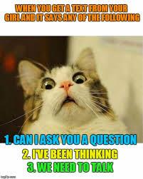 Cat Trap Meme - don t answer it s a trap imgflip