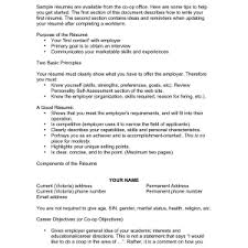 cover letter resume examples with objective statement sample