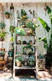 the 25 best indoor plant stands ideas on pinterest indoor pots