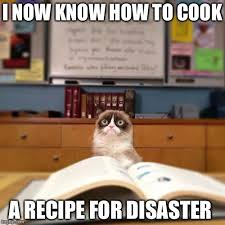 Angry Cat Good Meme - grumpy cat memes album on imgur
