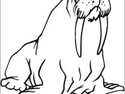 Coloriage à imprimer animaux du froid  Bondless