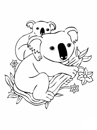 what color are koala bears kids coloring europe travel guides com