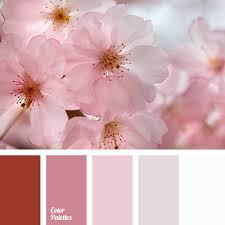 light pink color light pink page 3 of 9 color palette ideas