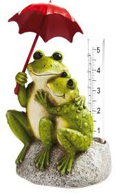 4678 best frogs images on pinterest tree frogs red eyed