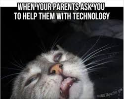 Sad Kitty Meme - when your parents ask you to help them with technology funny sad