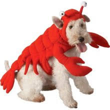 Lobster Costume Lobster Costume U2013 Costumes Of