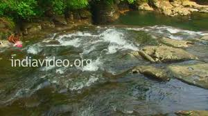 What Is Root Bridge Root Bridge At Mawlynnong Shillong Youtube