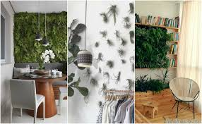 design idea green wall ideas for stylish and soothing home