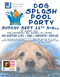 Best Pumpkin Patch Albany Ny by Dog Splash Pool Party Kids Out And About Albany