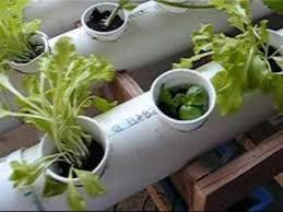 Indoor Garden Supplies - plain indoor garden supplies ithaca ny premium potting soil