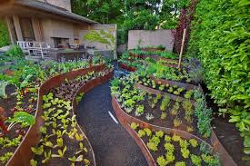 Garden Layout Ideas Vegetable Garden Layout Ideas Ideas By Mr Right