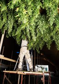 legalize pot you must be high time