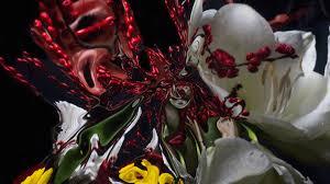 geoffroy mottart flower art creators