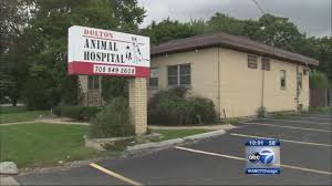 dolton animal hospital shut down after animal remains found in