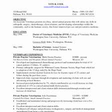 Sle Resume Objectives Tech surgical technician resume objective new pharmacy tech resume