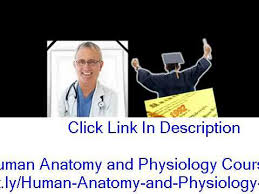 Human Physiology And Anatomy Pdf Human Anatomy And Physiology Course Study Guide Pdf Youtube