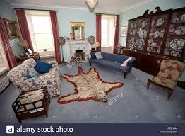 Azari Rugs Tiger Rug Tiger Rug In Skaill House Orkney Scotland Uk Stock