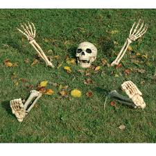 Skeleton Bones For Halloween by Totally Ghoul Halloween Skeleton Ground Breaker 21 5 In
