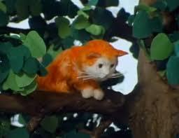 lost cat fireman sam wiki fandom powered wikia