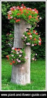 81 best tree stump ideas images on fairies garden