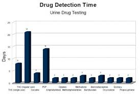 drug detection time table urine drug testing in canada hcc