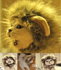pet costume lion mane wig dog cat halloween clothes fancy