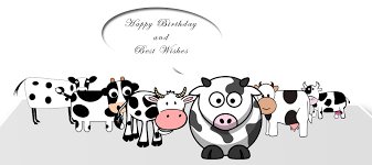 the 14 funny birthday cards for friends 1birthday greetings