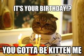 Happy Kitten Meme - happy birthday kitten memes birthday best of the funny meme