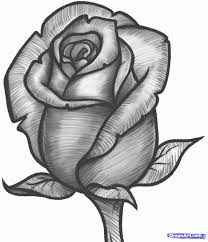 beautiful pencil sketches of roses drawing art ideas