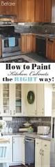 How To Refinish Cabinets Refinishing Laminate Cabinets Best 25
