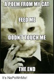Meme Poem - a poem from my cat feed me dodnt touch me the end it s napowrimo