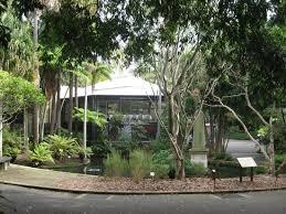 Sydney Botanic Gardens Restaurant Green Tomato Gazpacho Picture Of Botanic Gardens Restaurant