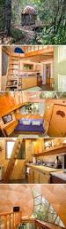 832 best round homes images on pinterest dome house the mushroom dome cabin