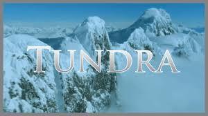 tundra tundra biome informational video youtube