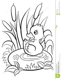 pond coloring pages best coloring page with pond inhabitants and