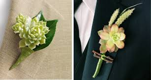 succulent boutonniere succulents a green alternative to cut flowers