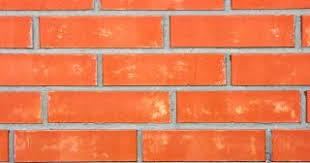 wall bricks wallpaper photo free download