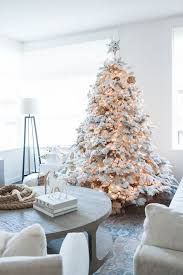 charming decoration small white trees winter park