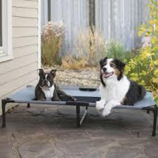 amazon com k u0026h manufacturing original pet cot large 30 inch by